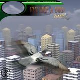 Fly like a bird 3 download