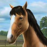My Horse download
